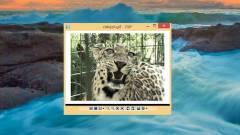 Így játszd le az animált GIF-eket a Windowsban kép