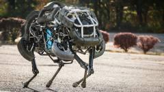 Kezdhetünk rettegni a robothadseregektől kép