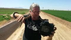 42 millióba kerül egy csörgőkígyóval szelfizni kép