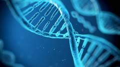 DNS tárolhatja a géped adatait kép
