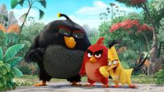Hamarosan mozikban az Angry Birds madárkái kép