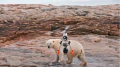 Medvestresszt okoznak a drónok kép