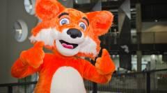 A Mozilla már nem függ anyagilag a Google-től kép