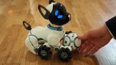 Cuki lett az új robotkutya kép