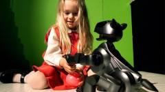 Érzelmileg kötődik az emberekhez a Sony leendő robotja kép