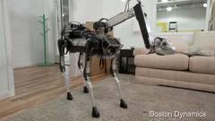 Ilyen egy király robotkutya kép