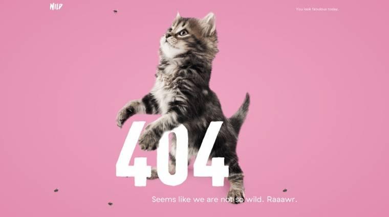 Leszámolna a 404-es hibával a Firefox kép