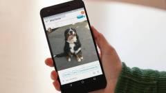 Snowden nem szereti a Google üzenetküldőjét kép