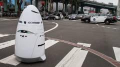 Legyűrték a Szilícium-völgy robotzsaruját kép