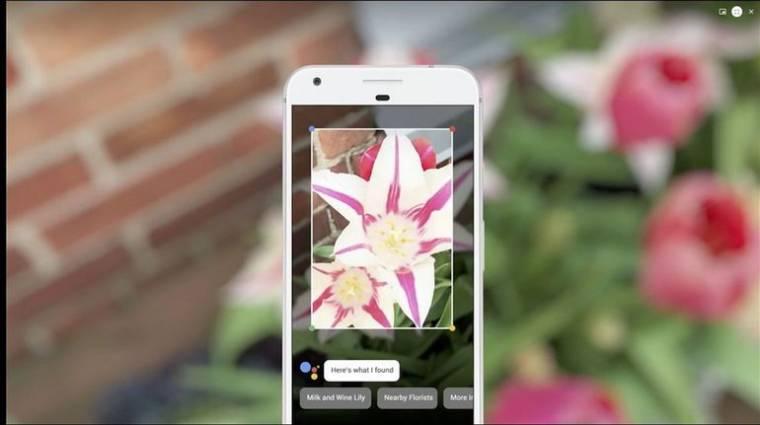 Beazonosítja a körülötted lévő világot a Google Lens kép