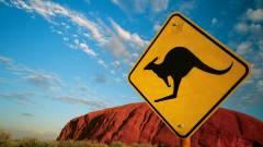 Kitoltak a kenguruk a robotautókkal kép