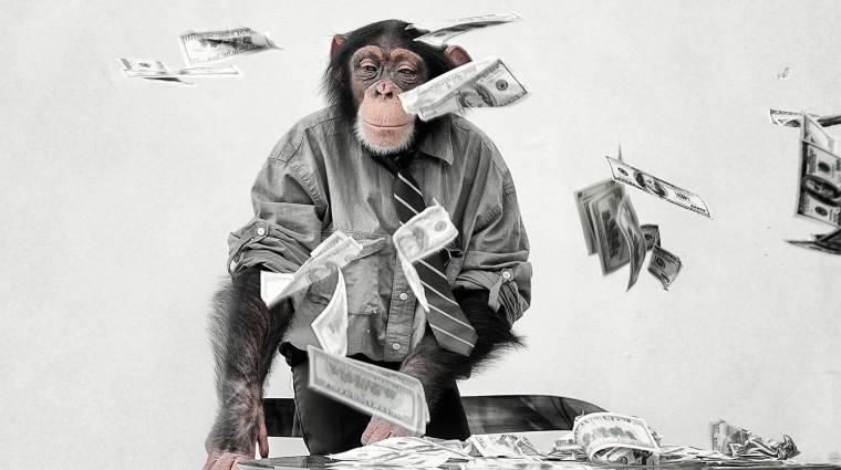 Lecsap a sumák kampányokra az Indiegogo kép
