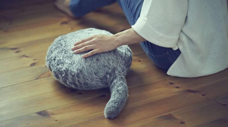 A fejetlen macska lesz a kedvenc otthoni robotod kép