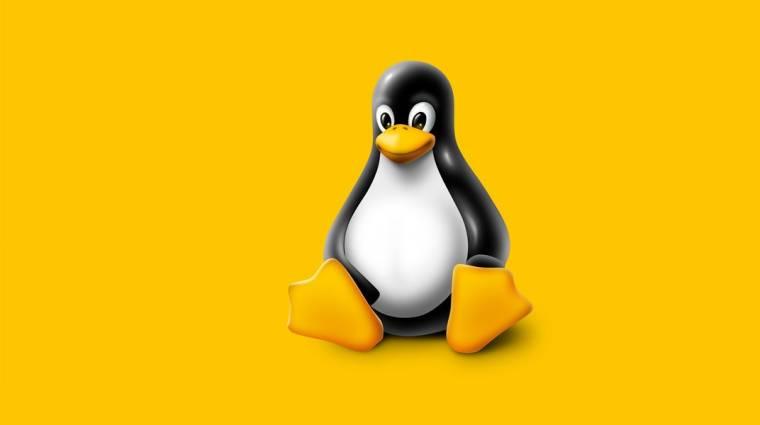 Linux-tévhitek: ne félj a pingvintől! kép