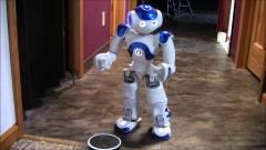 Robotokat rakna a lakásodba az Amazon kép