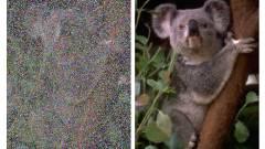 Villámgyorsan turbózza fel a fotókat az NVIDIA mesterséges intelligenciája kép
