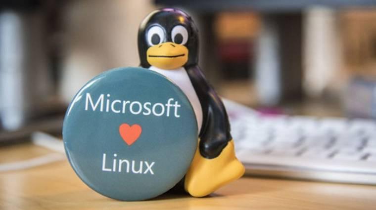 Elképesztő lépéssel védi a Linuxot a Microsoft kép